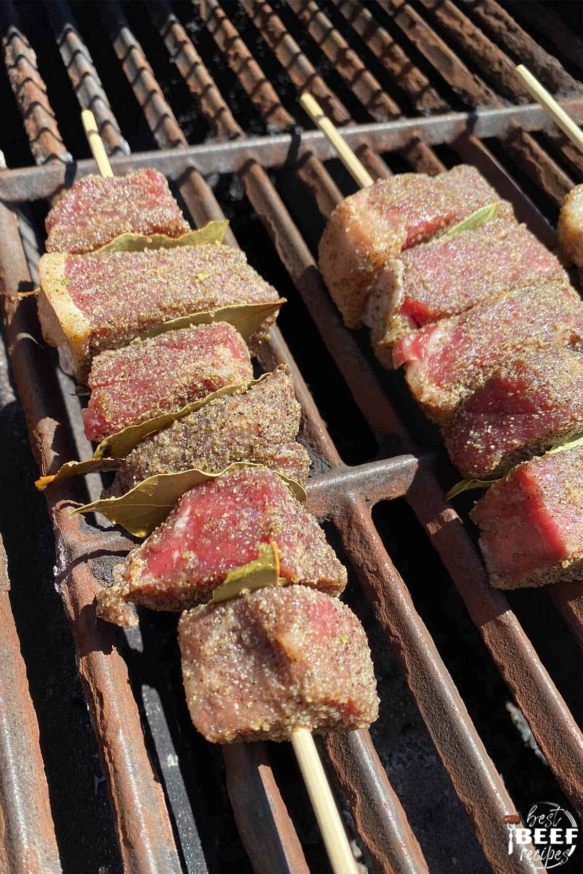 Beef kabobs on the grill cooking